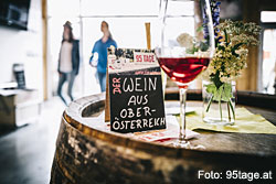 Weinbau Florian Eschlböck in Hörsching