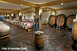 Weingut Dautel in Bönnigheim, Württemberg