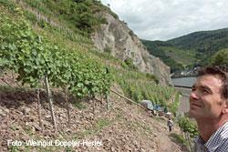 Weingut Doppler-Hertel in Essingen, Pfalz