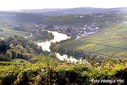 Weingut Hild in Wincheringen an der Mosel
