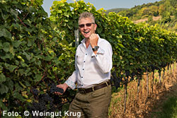 Weingut Krug in Gumpoldskirchen