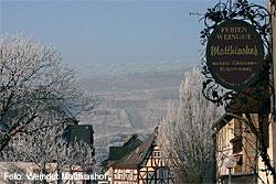 Ferienweingut Matthiashof in Wintrich an der Mosel