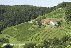 Weingut Hannes Sabathi in Gamlitz