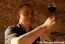 Weingut und Destillerie Schaurer in Insheim, Südpfalz