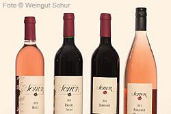 Weingut Schur