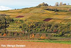 Weingut Ziereisen in Efringen-Kirchen, Markgräflerland