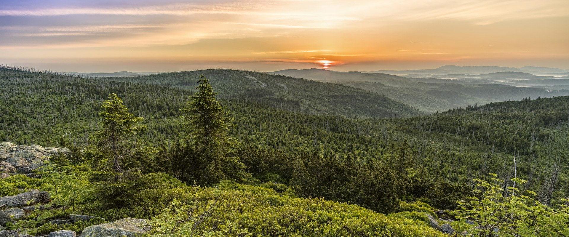 Blick vom Lusen (1373 m) im Bayerischen Wald