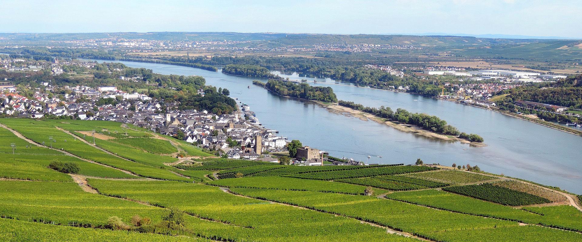 Rheingau - Rüdesheim